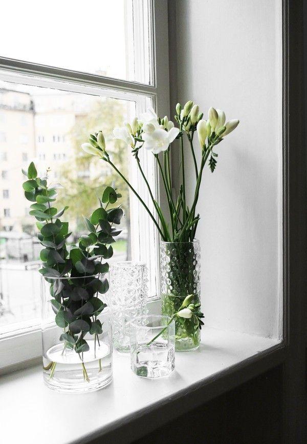 kvety na parapete