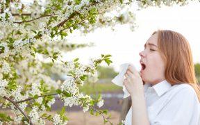 peľová alergia