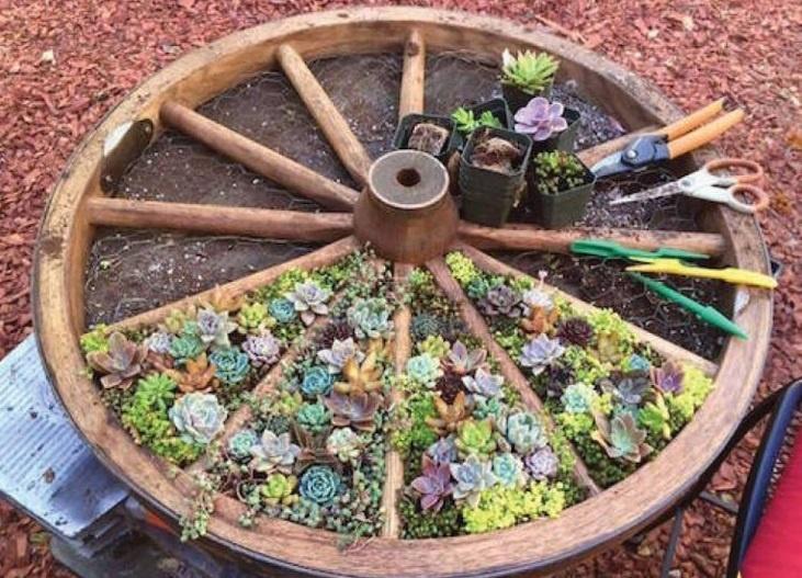 záhradná dekorácia staré koleso