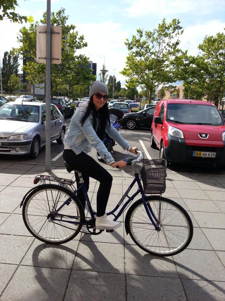 život v Dánsku